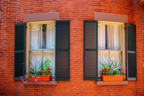 עיצוב הבית עם צמחיה