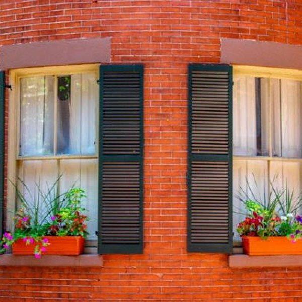 עיצוב הבית בשילוב צמחיה חיה