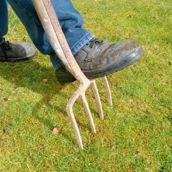 תחזוקת הגינה בבית – איך עושים את זה מבלי להתעייף?